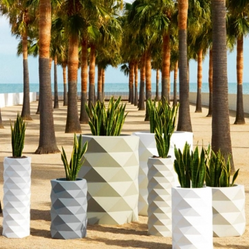 Marquis Planters