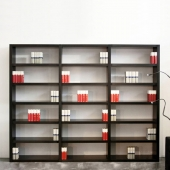 Big Irony Bookcase